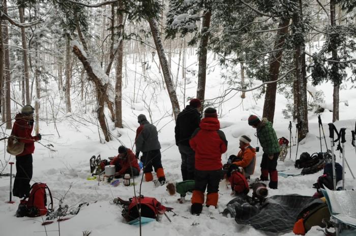 8249木立の中は、風もなく、休むにはGOODです。