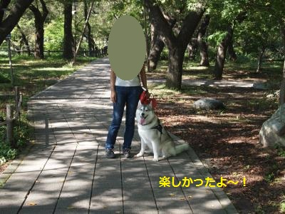 P9207568_convert_20130925213531.jpg