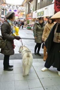 2013年 1月大須(家族写真添付) 083