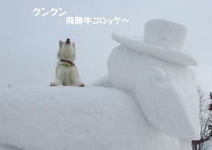 2013年2月鬼怒川大会 1094