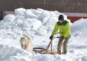 2013年3月ひるがの橇練習 001a