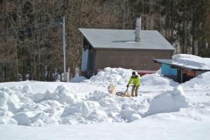 2013年3月ひるがの橇練習 001