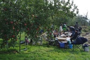 2013年11月りんご狩とグリーンゲーブル 174