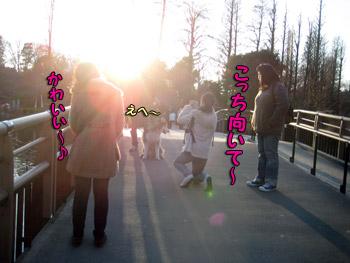 アイドル撮影会