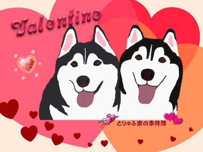 バレンタインとりゅふ&ぽとふ