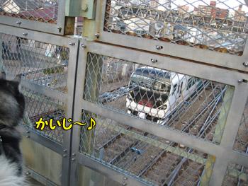 電車観察中