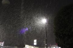 snow_0201.jpg