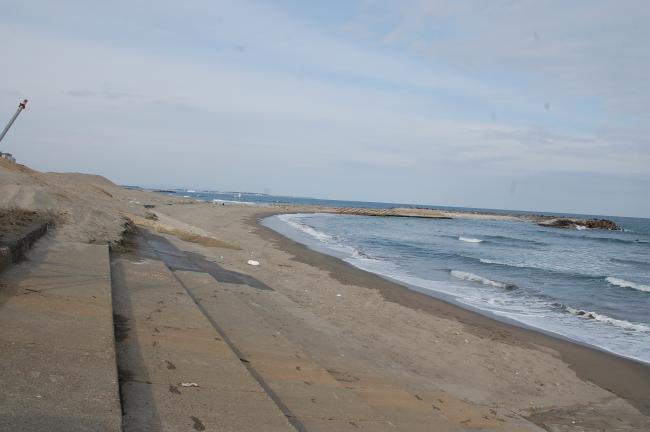サンビーチ調査5