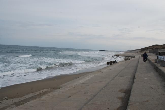 サンビーチ調査6