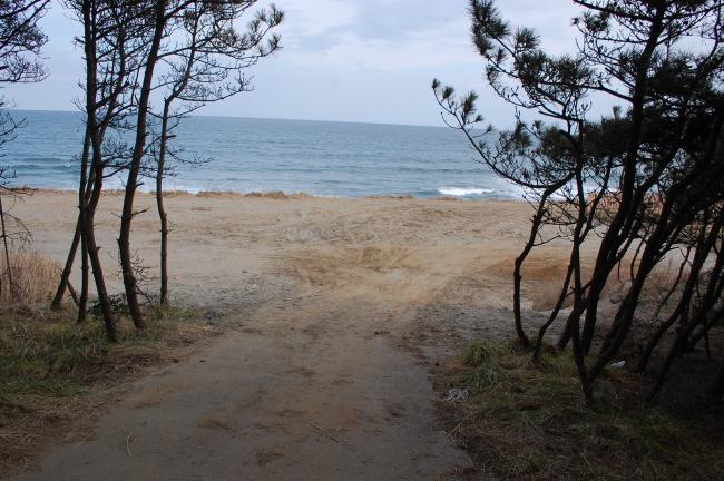 サンビーチ調査11