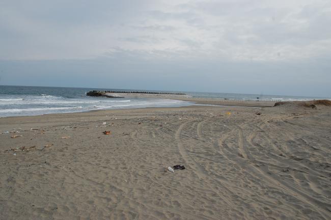 ♯ビーチ調査16