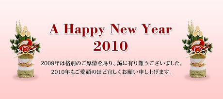 bnr_2010[1]