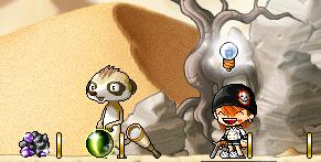 20100312ネコ目石