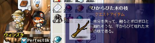 20100316うぃんすたん2