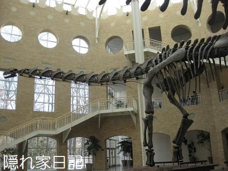 アルゼンティノサウルス