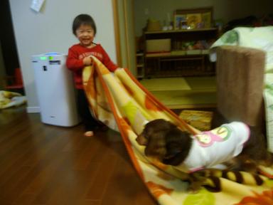 2010 02 17 momo1歳半 blog01