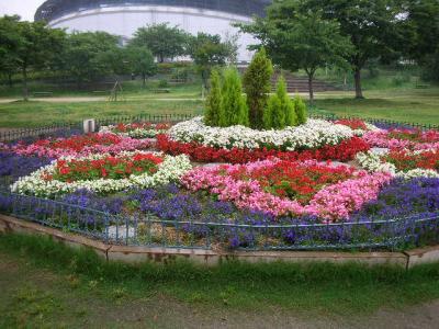 DSCN9389_convert_20110622131706.jpg