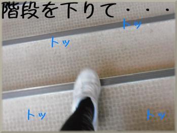 階段を下りて・・・