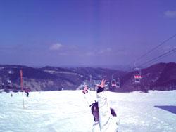 春スキー3