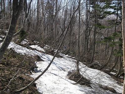 雪解け斜面
