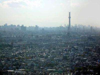 東京スカイツリーも見えるよ