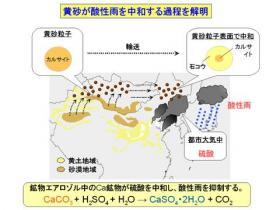 黄砂が酸性雨を中和する課程