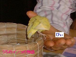 14-05-09-01.jpg