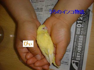 14-05-09-04.jpg