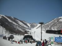 hakuba_snow1.jpg