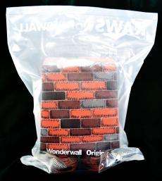kawswonderwall-02.jpg