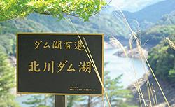 damu_1.jpg