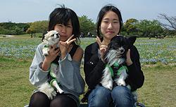 sakihira2.jpg