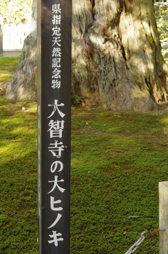 R_PEN4624.jpg