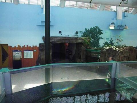 いしかわ動物園 郷土の水辺