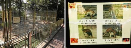 足羽山公園遊園地 小動物園