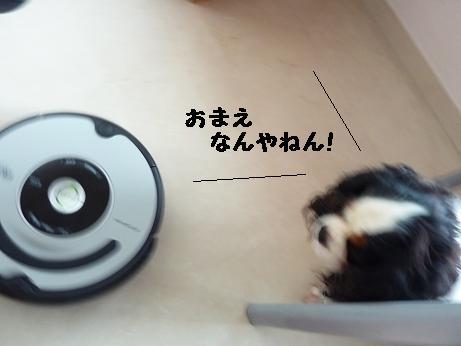 20111019_04.jpg