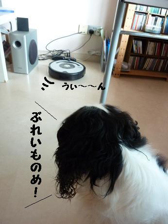 20111019_05.jpg