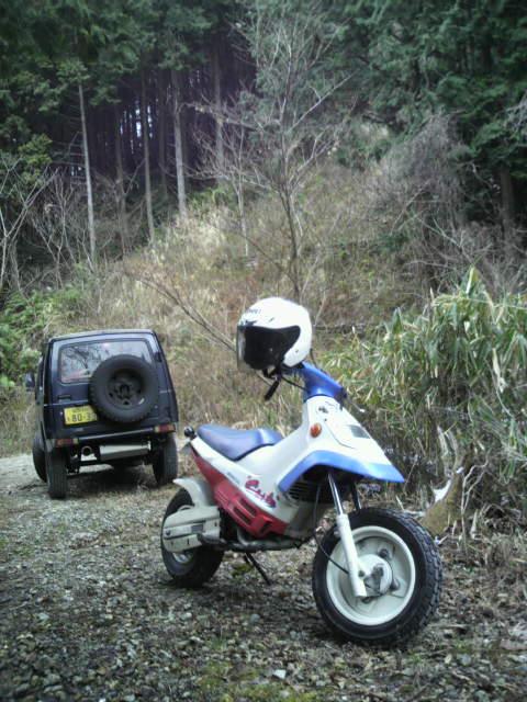 「昭和の森」の林道奥