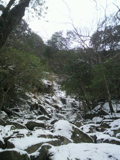 昨日の雪からするとたいして雪なしの登山道
