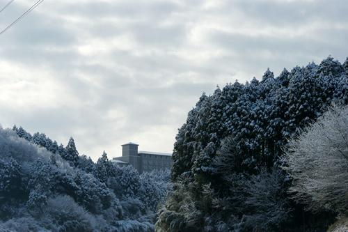 2012.1.24 初雪 005