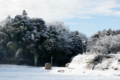 2012.1.24 初雪 012
