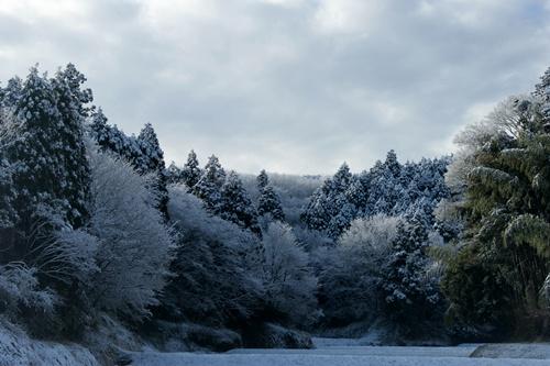 2012.1.24 初雪 010