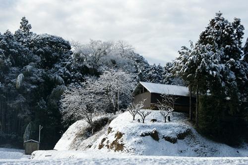 2012.1.24 初雪 008