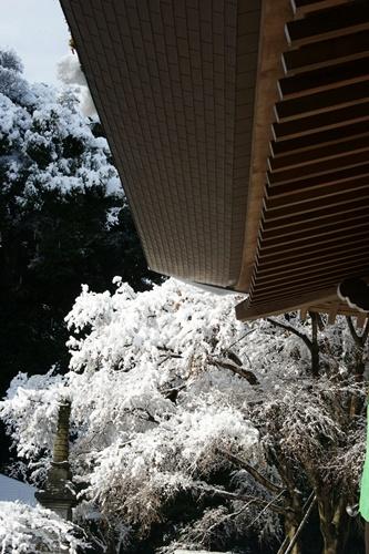 2012.1.24 初雪 027