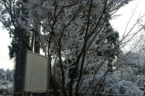 2012.1.24 初雪 039