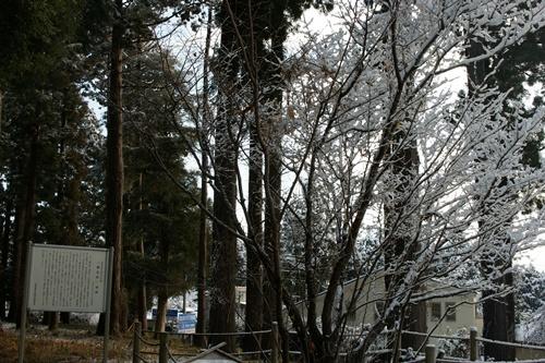 2012.1.24 初雪 037