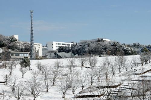 2012.1.24 初雪 052