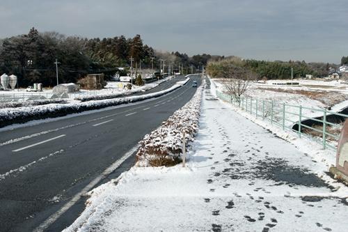 2012.1.24 初雪 051