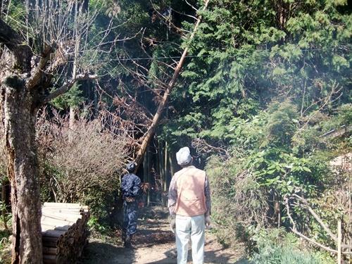 2012.4.8庭木の剪定 040 (5)