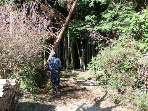 2012.4.8庭木の剪定 040 (7)